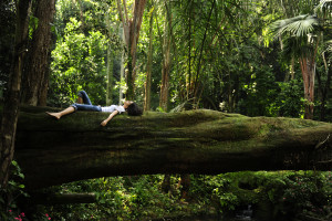 woman laying on log
